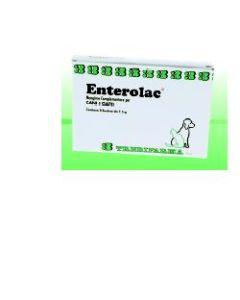 Enterolac Polvere 8 Bustine da 7,5 g