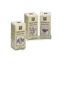 Echinacea Estratto Analcolico 50 ml Articolo 813