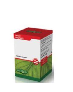 Riso Rosso 60 Capsule 450 mg