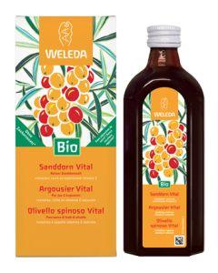 Olivello Spinoso Vital Succo di Frutta 250 ml